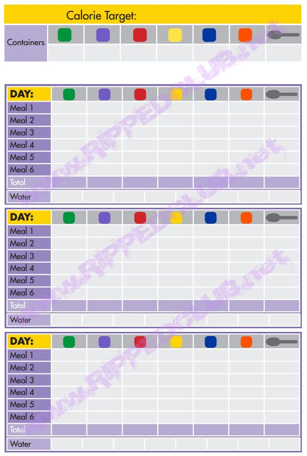 Day Fix Planning Tools Day Fix Pinterest Day Fix - 21 day fix template