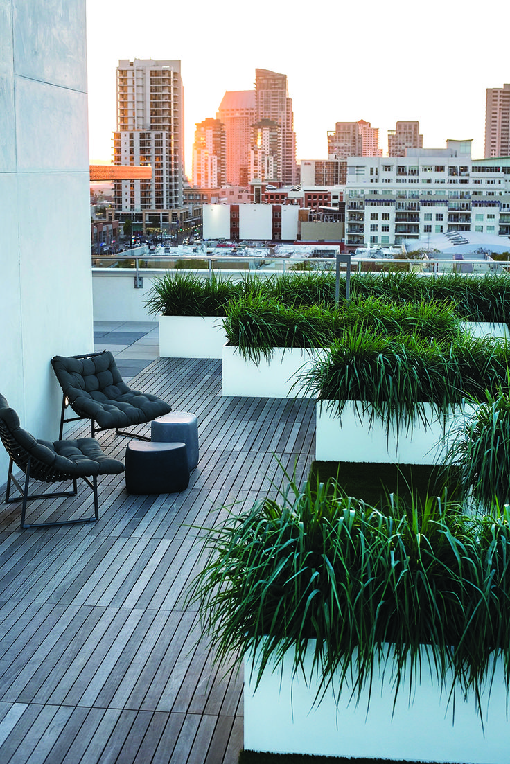 Modern Fiberglass Planters on rooftops are light weight and long lasting