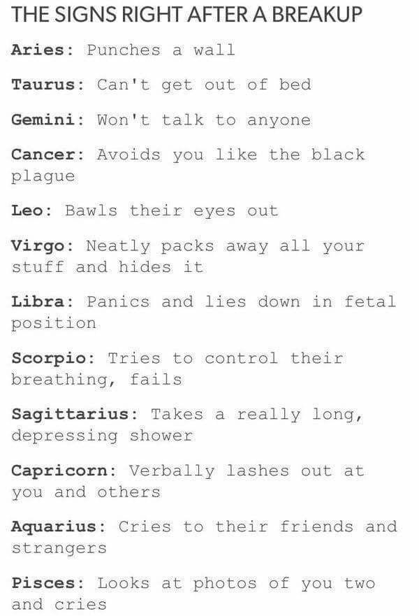 1160 Best Zodiac Signs Images On Pinterest  Capricorn -5559