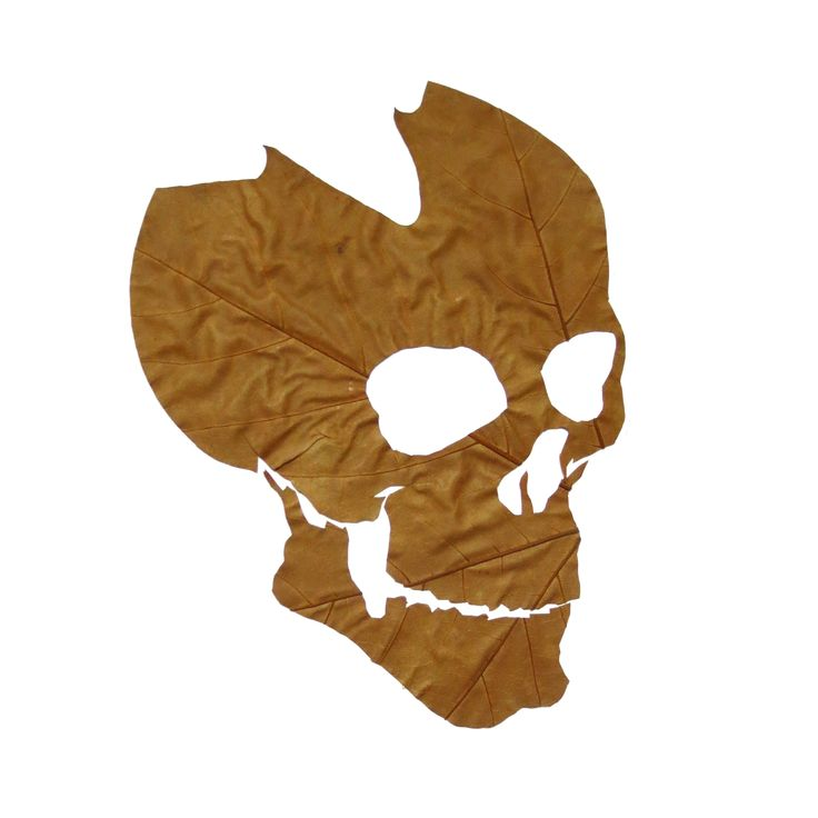 Fine Oddity - Skull from hand cut leaves