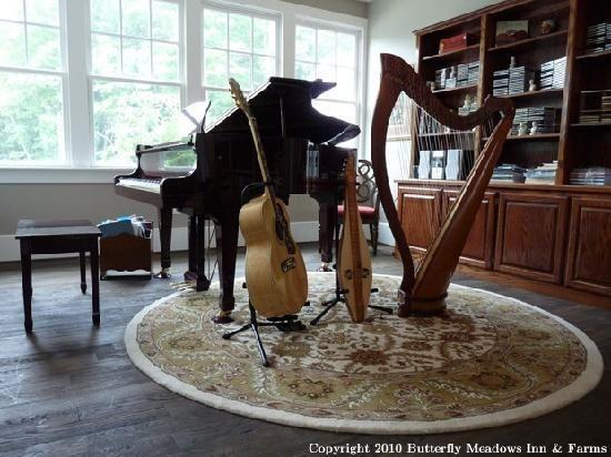 music room - beautiful