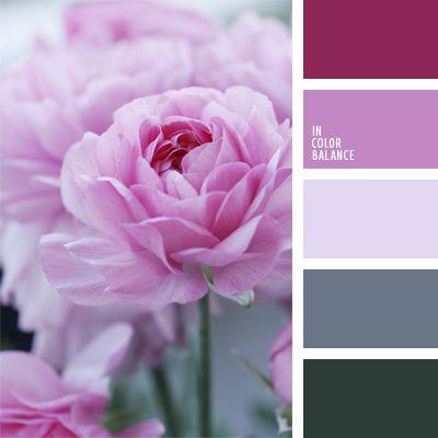 color blanco sucio, color heliotropo, color lila, color orquídea, colores gris y rosado, combinación de colores, elección del color, lila claro, lila y violeta, púrpura pálido, selección de colores de invierno, selección de colores para el diseño, tonos fríos del rosado.