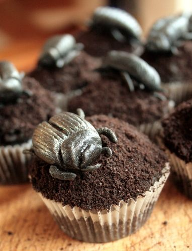 Black Velvet Dung Beetle Cup Cake for boys
