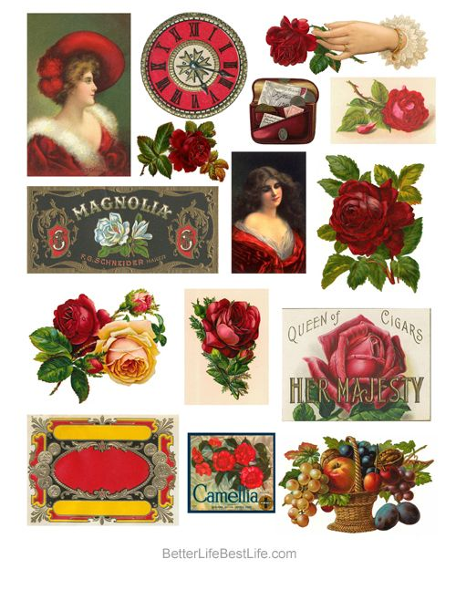 """VINTAGE """"LADIES AND ROSES"""" STICKER COLLECTION"""
