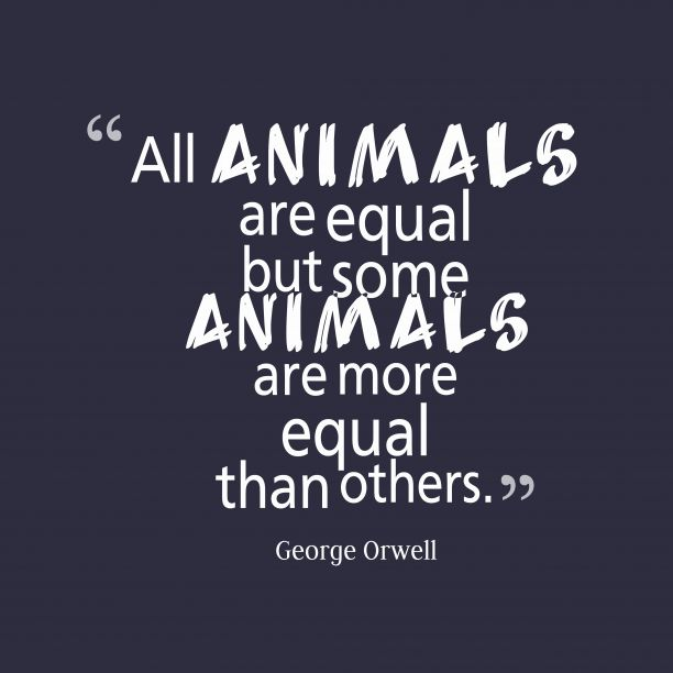 all animals equal All animals are equal, but some animals are more equal than others (see important quotations explained) summary years pass many animals age and die, and few recall the days before the rebellion the animals complete a new windmill, which is used not for generating electricity but for milling corn, a far more profitable endeavor.