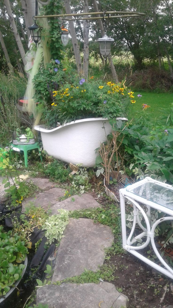 claw foot tub filled with good soil planted with wild flowers for the birds, butterflies & bees.