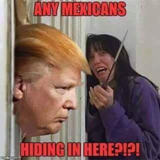 "Donald Trump/ Here's Johnny! ""Any Mexicans Hiding in here!?"" Funny Meme"