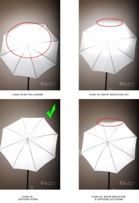 How To Use Umbrella Lights Adorable 46 Best Learning Photography Images On Pinterest  Photography