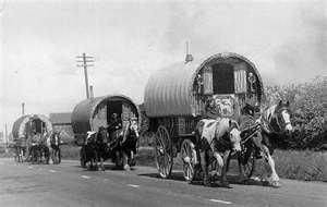 Big Sky Gypsy, Gypsy Horse, Gypsy Vanner, Gypsy Cob, Irish Cob, Gypsy ...: The Roads, Boho Gypsy, Gypsy Watering, Real Life, Gypsy Wagon, Old Photo, Gypsy Life, Vintage Photo, Gypsy Caravans