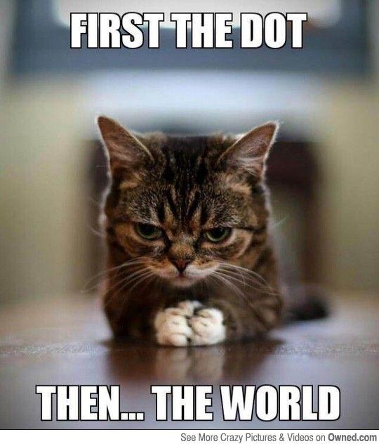 evilcat
