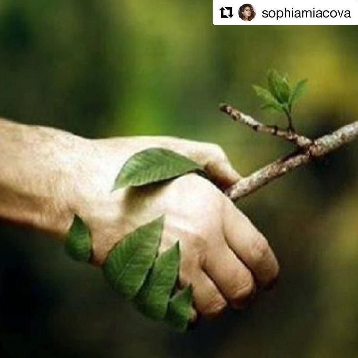 We this from supergirl @sophiamiacova #Repost @sophiamiacova (@get_repost) We are living in a time in which a great responsibility weighs on our shoulders. If we neglect to see ourselves as a whole and work against our environment we will have no environment left. GLOBAL WARMING: a gradual increase in the overall temperature of the earth's atmosphere generally attributed to the greenhouse effect caused by increased levels of carbon dioxide chlorofluorocarbons and other pollutants The proof…