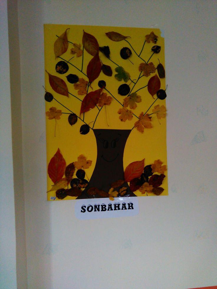 Sonbahar Ağacı.