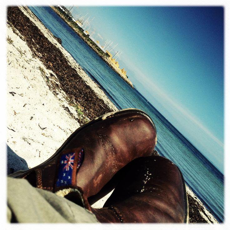 Blue Heelers on the Aarhus Beach by outbackboots.dk - genuine australian boots