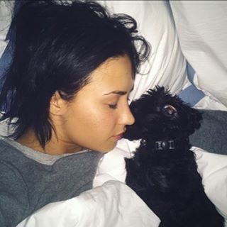 Pin for Later: You'll Fall in Love With Demi Lovato's Puppy After Seeing These Pictures