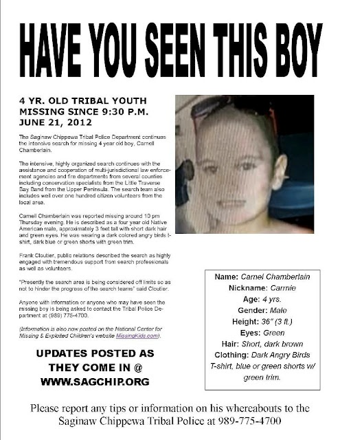 40 best Missing Persons - Please Help! images on Pinterest Amber - missing persons template