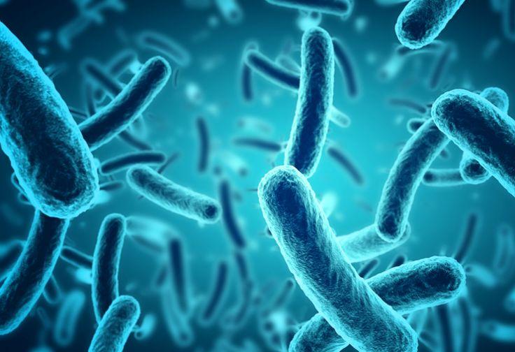 Mengonsumsi Es Teh Berisiko Terjangkit Kolera