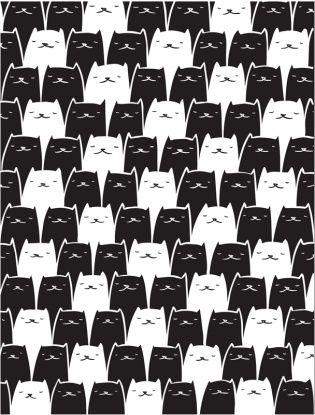 black and white cats (I think) // becauseshewasbeautiful