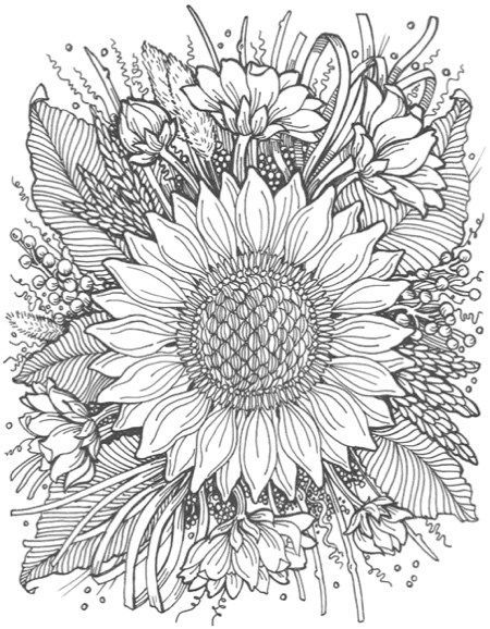 line sunflower tattoo  google search  flower coloring