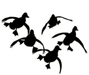 cupped duck window decal goosehuntingdecals duckhuntingart