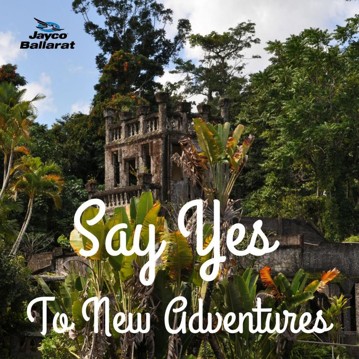 Say yes (1)