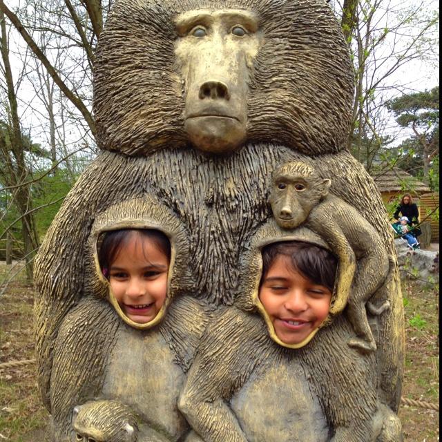 Mijn aapjes #beeksebergen