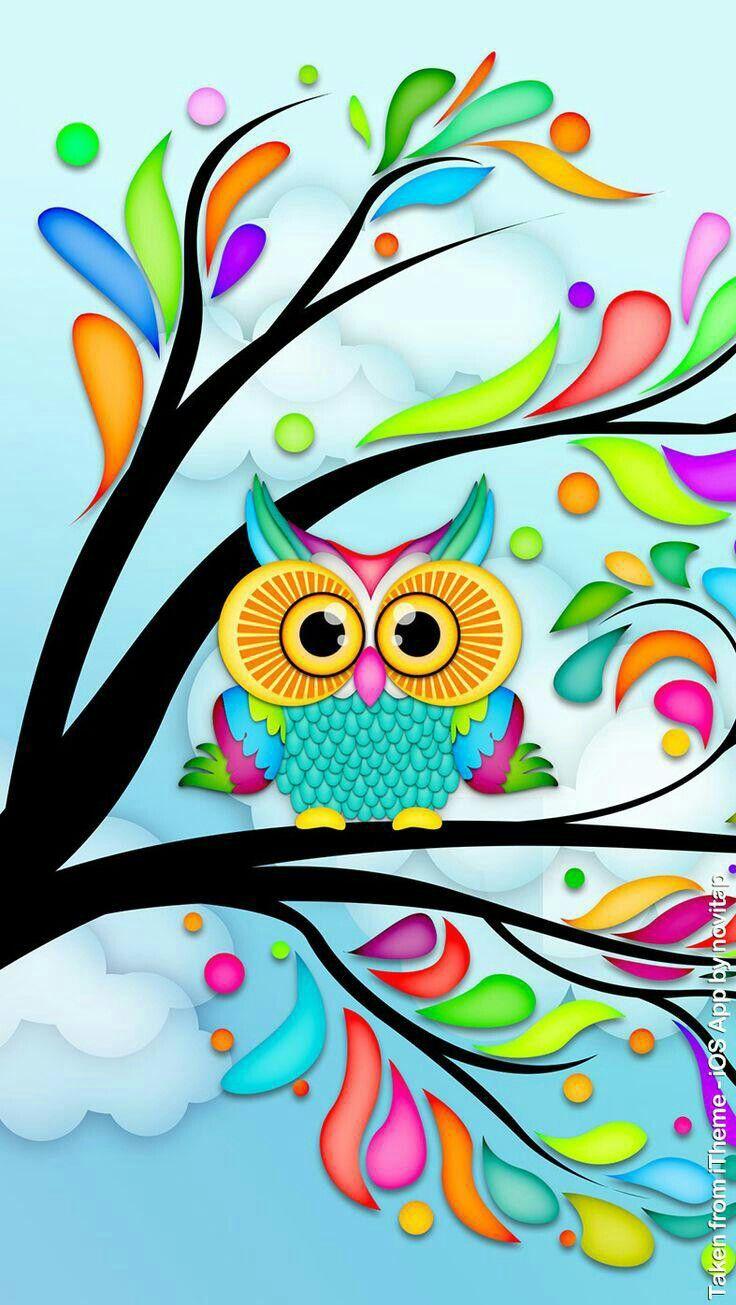 Insomniac Owl Wallpaper