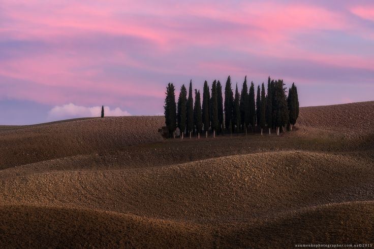 Фотограф Александр Науменко (Aleksandr Naumenko) - Италия. Тоскана. Кипарисовый остров на закате в San Quirico d'Orcia #1576425. 35PHOTO