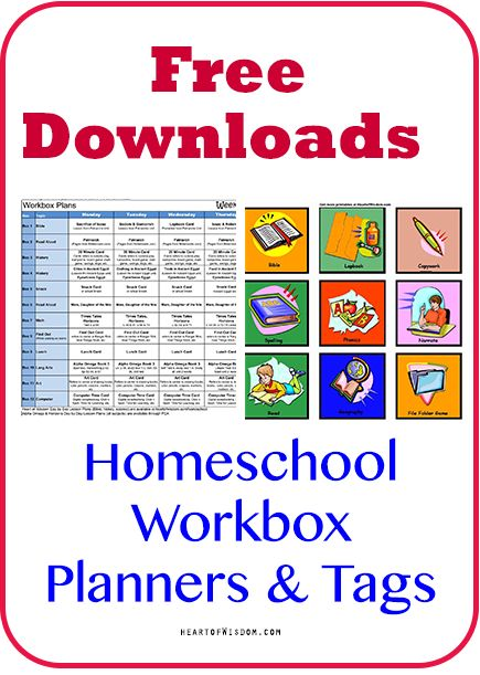 We organize our homeschool days using the workbox system (usable with any curriculum). Since we started using this system we get twice as much done and my boys really look forward to school! I love...