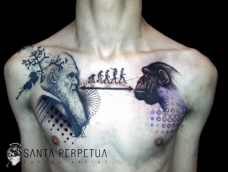 Darwin's theory of evolution tattoo... Gorgeously done