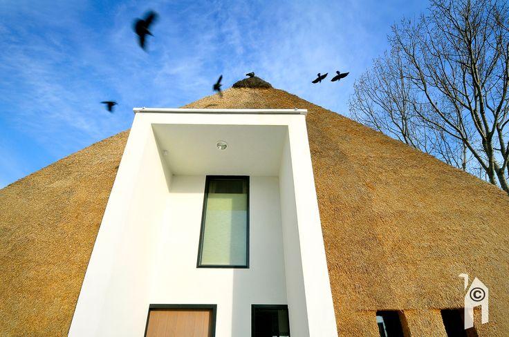 Arjen Reas ontwerpt bijzondere woning met rietkap, omarming van stedelijke en landelijke stijl - Eigenhuisbouwen.nl