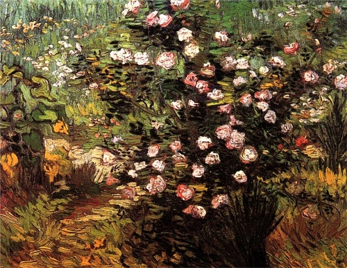 Vincent Van Gogh-Rosebush in Blossom (by BoFransson)