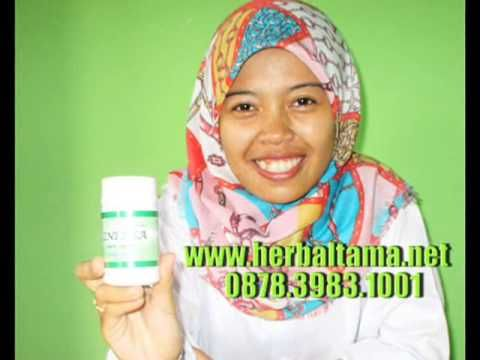0878 3983 1001 Cara mengatasi gejala asma pada balita