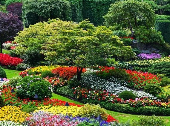 The Butchart Gardens In Brentwood Bay On Vancouver Island, Canada, Is One  Of The
