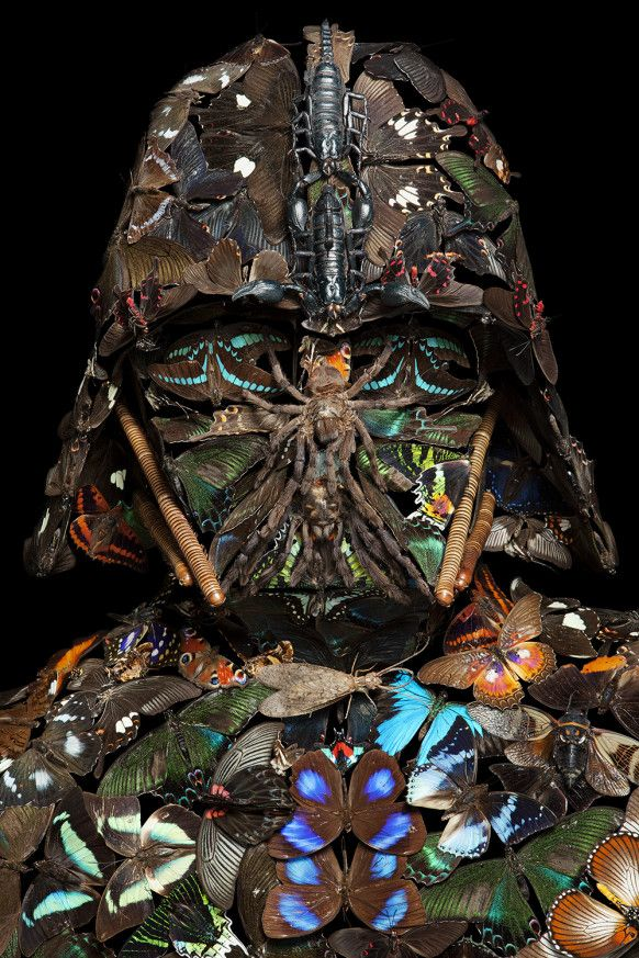 #MayThe4thBeWithYou Darth Vader mask made of bugs... no wonder he was so grumpy! (via WIRED) http://www.wired.com/2015/04/klaus-enrique-darth-vader-bugs/?utm_content=bufferf3b3e&utm_medium=social&utm_source=pinterest.com&utm_campaign=buffer #STARWARS