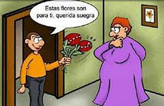 Imagenes De Humor Para Facebook | Humor para Facebook: La suegra de todos... | Ver Banco de Imagenes ...
