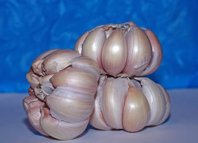 How To Heal An Ear Infection With Garlic Oil | LIVESTRONG.COM