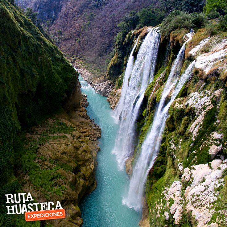 La Cascada de Tamul, es el salto más espectacular de #México. Se forma por aguas verdes y caudalosas, que se precipita desde una altura de 105 metros de altura.  Visítanos, ¡Te encantará!   #WeLoveAdventure www.rutahuasteca.com 01.800.543.7746 WhatsApp: 481.116.5900 email: info@rutahuasteca.com #RutaHuasteca #SLP #Ecoturismo #TurismoDeNaturaleza #VisitMéxico #Tours #TodoIncluido
