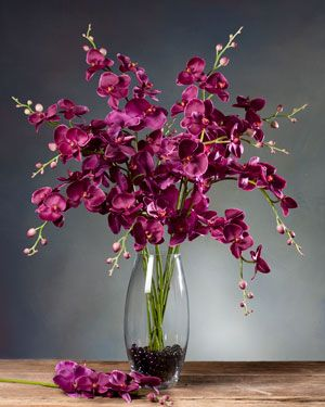 Phalaenopsis Orchid Silk Flower Stem - Fuchsia  ** Hannah is this the right color?
