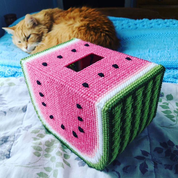 """8 Likes, 9 Comments - Julie Daelhousen (@littlesapphire2) on Instagram: """"Which is cuter, my newest project or Sunshine?  #cutecats #plasticcanvas #crafts"""""""