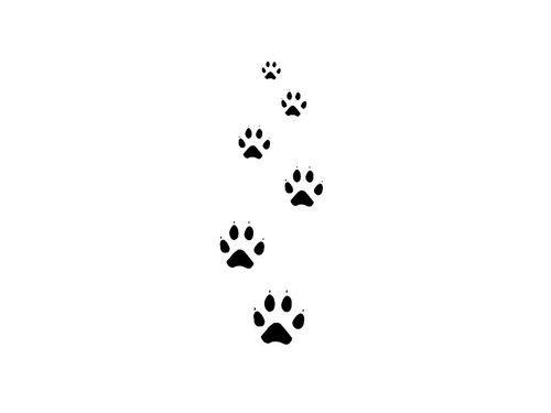 little cat paw tattoo - Google Search