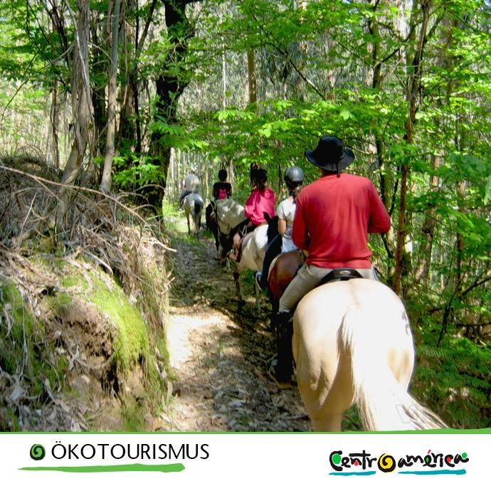 #Pferd #Ökotourismus #Wald #Laubwald #MittelAmerika #Latainamerika #Entdecken
