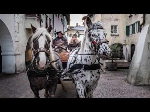 Von Ziegen, Pferden, Ochse und Esel - Castelfeder, Alps Coliseum, Kutschenfahrt und lebende Krippe Neumarkt - Wandern Südtirol bis Gardasee: Wandertipps mit Fotos & GPS Daten
