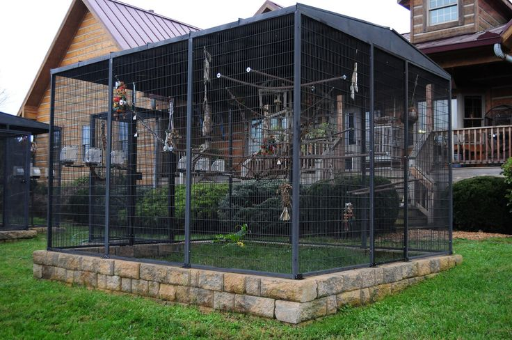 outdoor aviary landscape | 10x12 Outdoor Parrot Aviaries by CBD | Flickr - Photo Sharing!