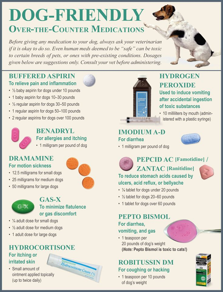 Best Over The Counter Pain Meds For Dogs
