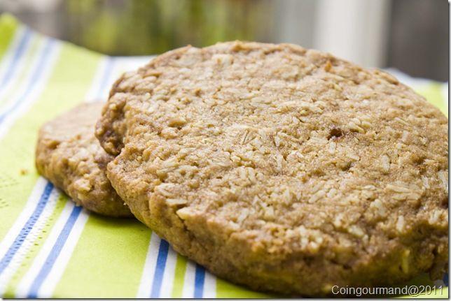 Biscotti avena e farina di riso o finti digestive