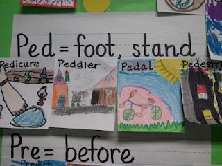 Greek/Latin root word wall ideas - like the pictures to go with affixes