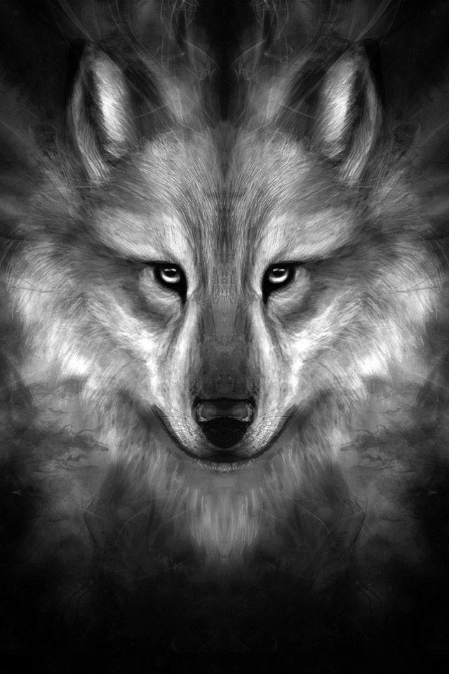 Freeios7 Wolf Face Story Center Freeios7 Com Wallpaper