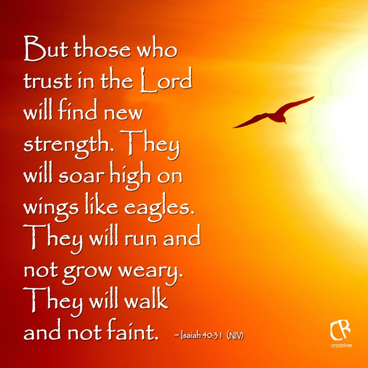 But those who trust in the Lord will find new strength. They will soar high on wings like eagles. They will run and not grow weary. They will walk and not faint. - Isaiah 40:31 #NLT #Bible verse | CrossRiverMedia.com