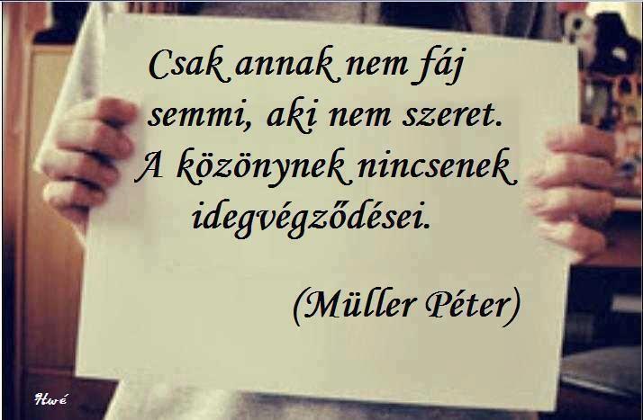 Müller Péter idézete a közönyről. A kép forrása: A legszebb idézetek