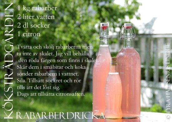 Rabarber recept Rabarberdricka